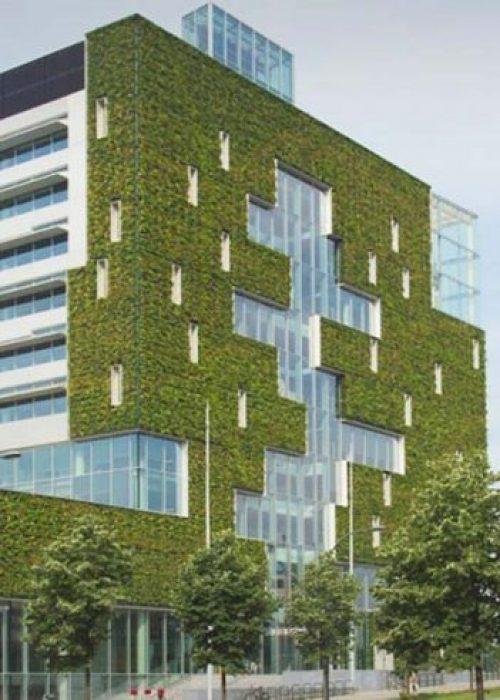 Stadskantoor groen Venlo header